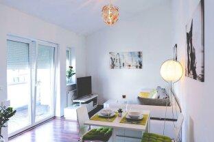 Dachgeschoß Wohnung mit Terrasse nähe Nestroyplatz, Praterstern, Taborstraße