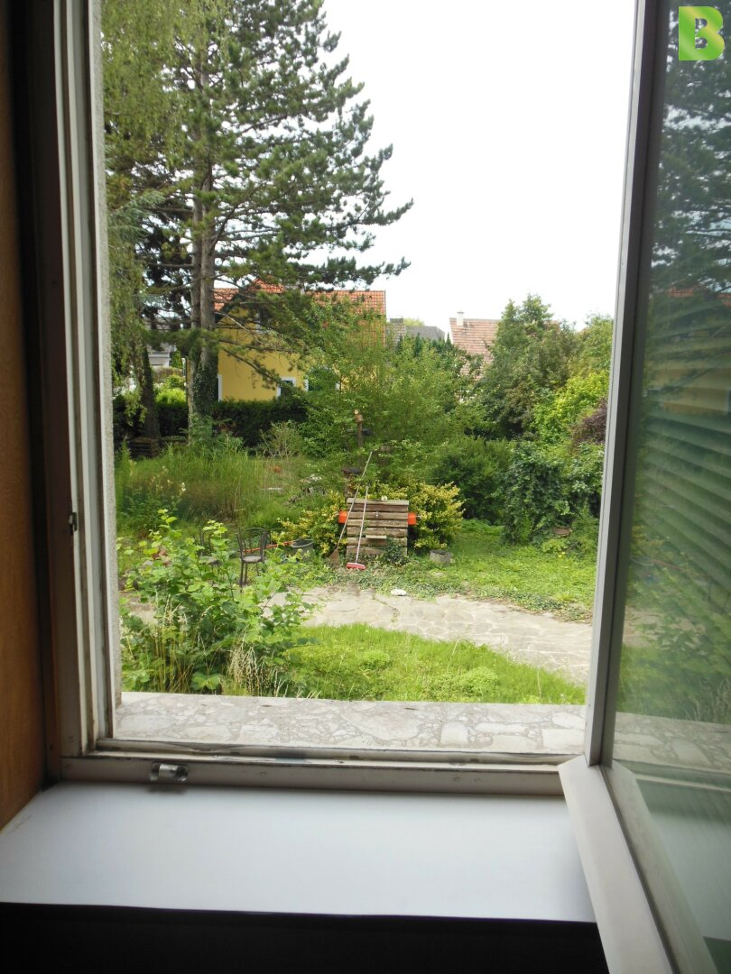 Ausblick in den Garten vom Kabinett