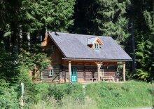 Waldhütte im Naturresort