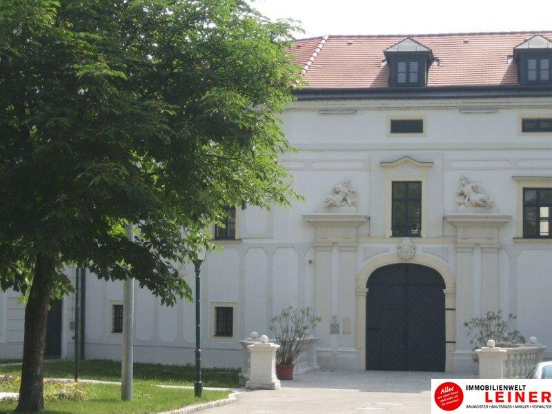 Schwechat - Rannersdorf:  ruhige 2 Zimmer - 50 m² Mietwohnung mit bester Verkehrsanbindung! Objekt_9823 Bild_597