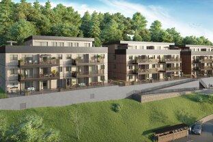Neubauprojekt New Living Liezen