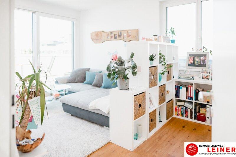 Schwechat - Penthouse - inklusive 28 m² Terrasse Objekt_9966 Bild_272