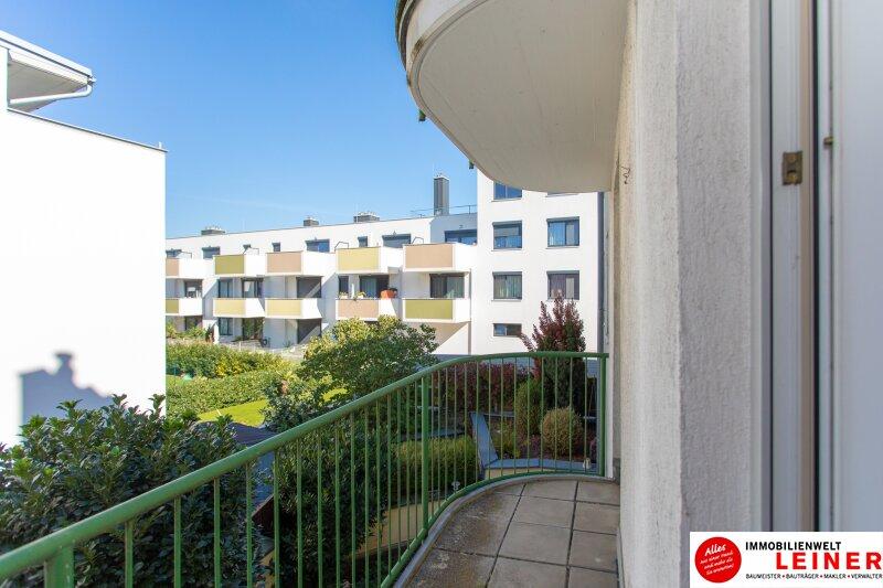 Großfamilie aufgepasst!! Riesige 5Zimmer Eigentumswohnung in Himberg. Objekt_9318 Bild_660