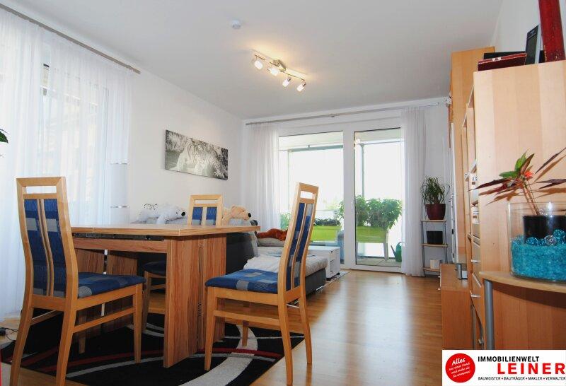 Traumhafte lichtdurchflutete Wohnung mit Balkon im Herzen von Schwechat Objekt_8930