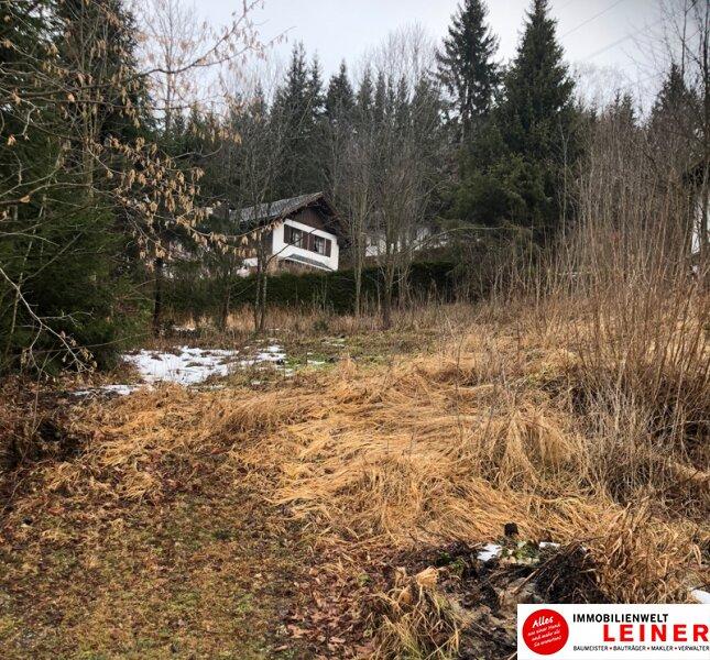 Ein sensationelles Grundstück zu einem sensationellen Preis Objekt_10846 Bild_83