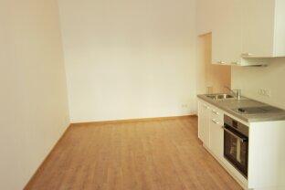 Totalsanierte 1,5 Zimmer: Studenten- oder Single-Hit mit Küche - T27