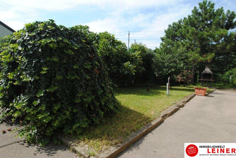Einfamilienhaus in Schwechat - Endlich genug Platz! Objekt_8935 Bild_817