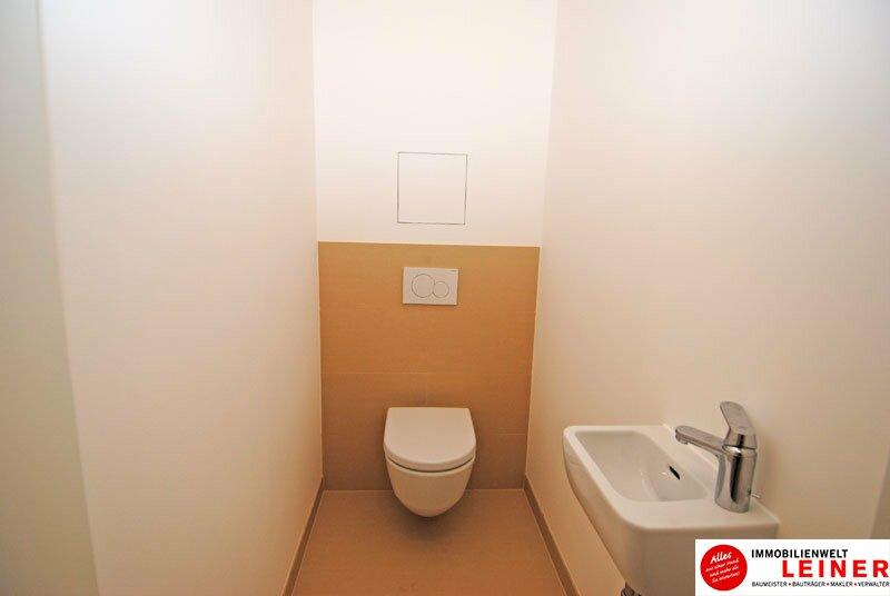 *UNBEFRISTET*Schwechat - 2 Zimmer Mietwohnung im Erstbezug mit großer Terrasse und Loggia Objekt_8692 Bild_224