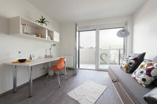PROVISIONSFREI! Vollmöbliertes Design Apartment mit Balkon, ALL-IN-MIETE! (5)