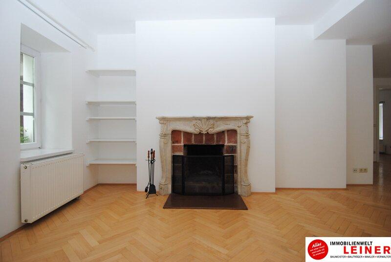 6 Zimmer Bürogebäude/Praxis in geschichtsträchtigem Gebäude nahe Wien Objekt_10771 Bild_209