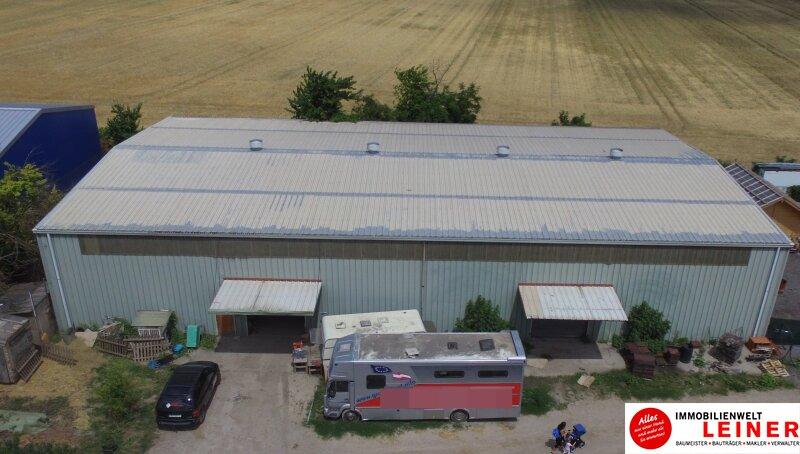 Lagerhalle nähe Autobahnabfahrt S1 Leopoldsdorf zu vermieten Objekt_8892 Bild_805
