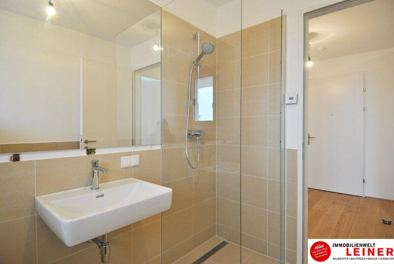 Schwechat - 57 m² Mietwohnung mit Terrasse im Zentrum - Erstbezug Objekt_9290 Bild_487
