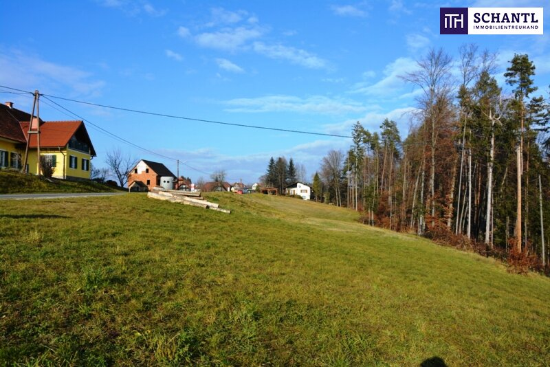 Ein Grundstück ist noch zu haben: Erfüllen Sie sich Ihren Traum vom Eigenheim in St. Josef/Weststeiermark! /  / 8143Muttendorf / Bild 1
