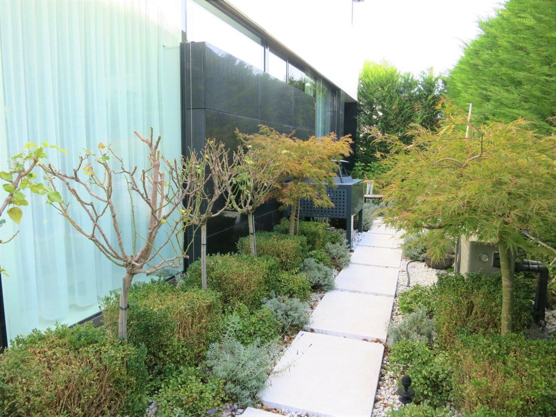 Pflanzen und Kräutergarten