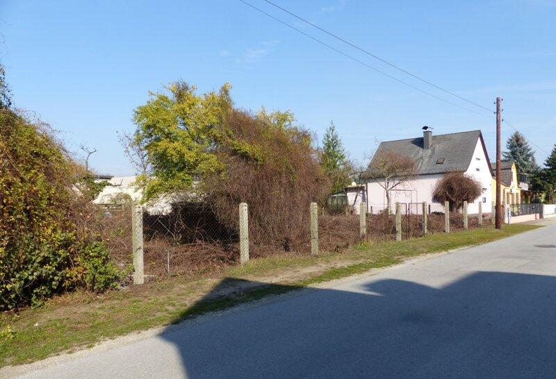 Schöne Eigentumswohnungen im Zentrum von Strasshof - Top 1 /  / 2231Strasshof an der Nordbahn / Bild 5