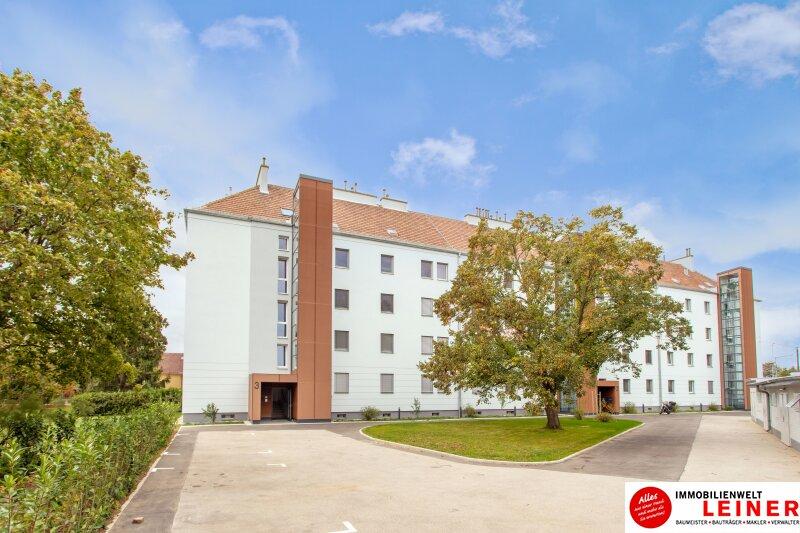 Schwechat - Rannersdorf:  wunderschöne 2 Zimmer Mietwohnung in ruhiger Hoflage! Objekt_11411 Bild_299