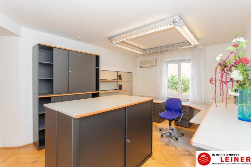 Schwechat: helles Büro in zentraler Lage Objekt_10405 Bild_301