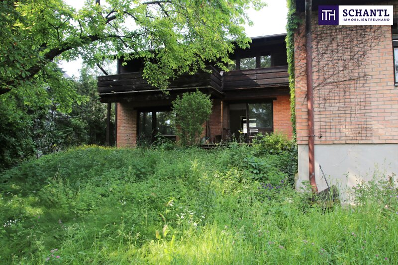 Naturidylle ! Absolute Toplage ! Südseitiges Traumgrundstück mit ausbaubarem Haus in Hinterbrühl ! /  / 2371Hinterbrühl / Bild 4