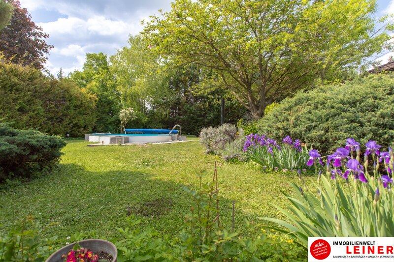 Ihr Haus * BUNGALOW* in Schwadorf mit 1077 m² Grund und Pool - verbringen Sie den nächsten Sommer im eigenen Garten Objekt_8819 Bild_647