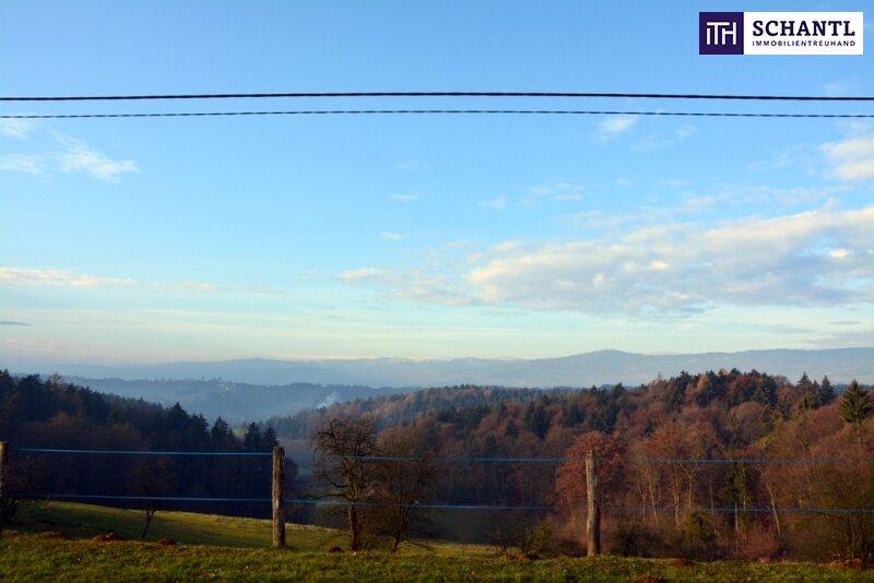 Ein Grundstück ist noch zu haben: Erfüllen Sie sich Ihren Traum vom Eigenheim in St. Josef/Weststeiermark! /  / 8143Muttendorf / Bild 3