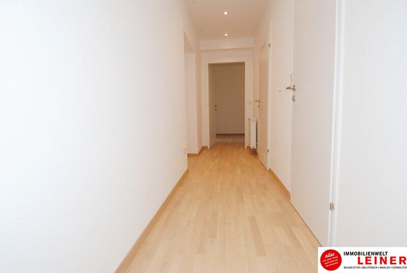 Schwechat - Rannersdorf: ALLES NEU -  wunderschöne 2 Zimmer Mietwohnung in Ruhelage! Objekt_11106 Bild_103