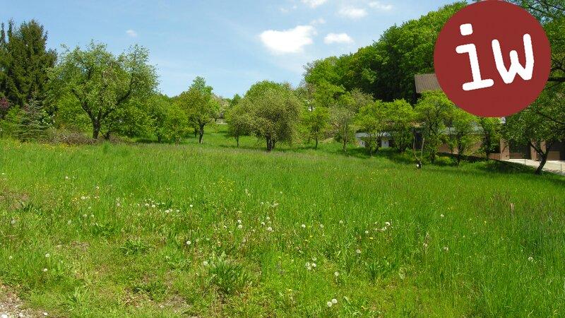 Schönes, sonniges, ebenes Grundstück in Weidlingbach! Objekt_586 Bild_39