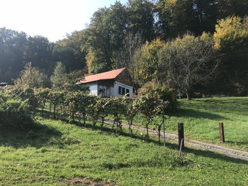 Haus, 7522, Heiligenbrunn, Burgenland