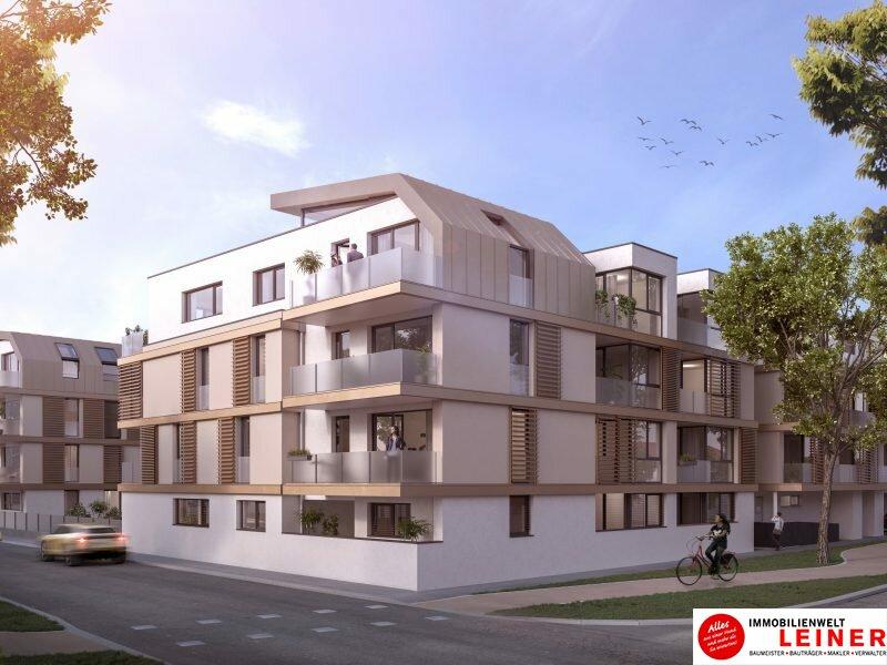 54,47 m²  | 2-ZIMMER WOHNUNG IN SCHWECHAT | PROVISIONSFREI Objekt_17112 Bild_131