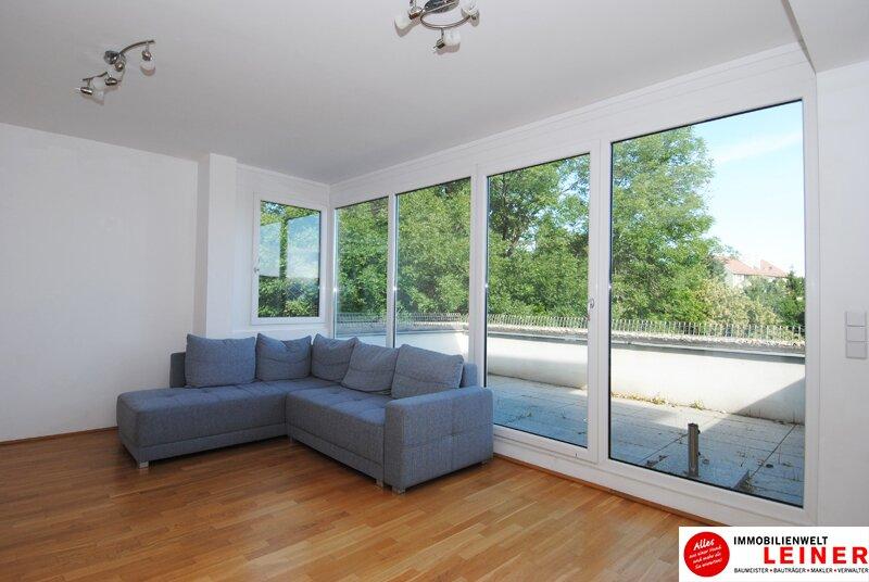 * BARRIEREFREI* Himberg - 3 Zimmer Mietwohnung mit großer Terrasse und Grünblick Objekt_8836 Bild_495