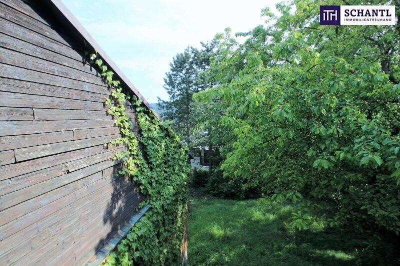 Naturidylle ! Absolute Toplage ! Südseitiges Traumgrundstück mit ausbaubarem Haus in Hinterbrühl ! /  / 2371Hinterbrühl / Bild 7