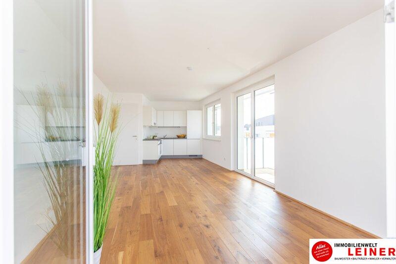 *UNBEFRISTET* Schwechat - 2 Zimmer Mietwohnung im Erstbezug mit großer Terrasse und Loggia Objekt_9406 Bild_468