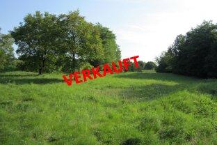 """Grundstück mit 4.134m² Grundfläche in leicht erhöhter Südhanglage! """"VERKAUFT"""""""