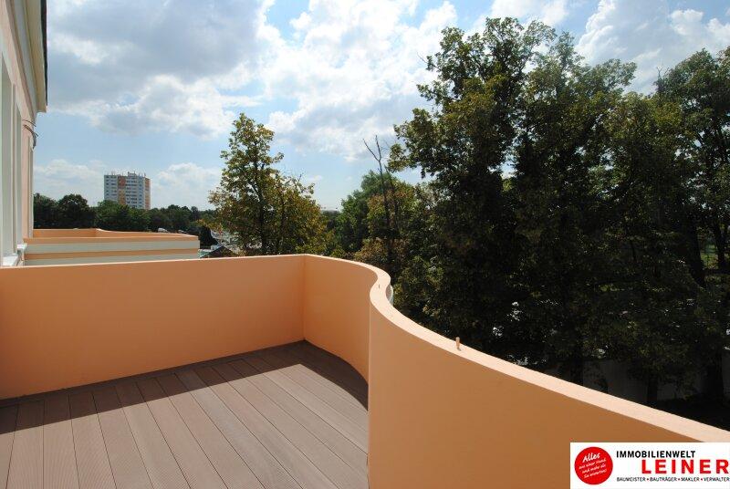 Schwechat - Mietwohnung 2 Zimmer mit großem Balkon  -  stilvoll wohnen in der geschichtsträchtigen Villa Mautner Markhof! /  / 2320Schwechat / Bild 2