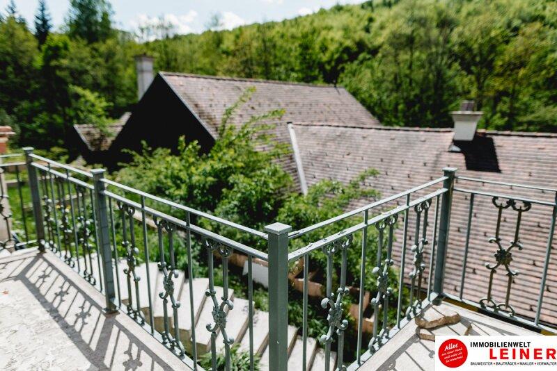 Die Sturany-Villa am Stift Heiligenkreuz Objekt_9551 Bild_475