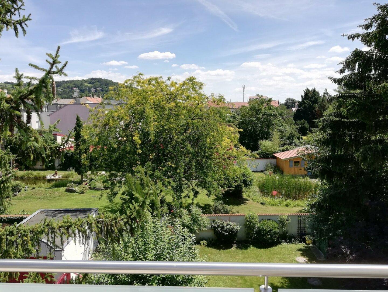 Blick auf Eigengarten und Nachbargärten