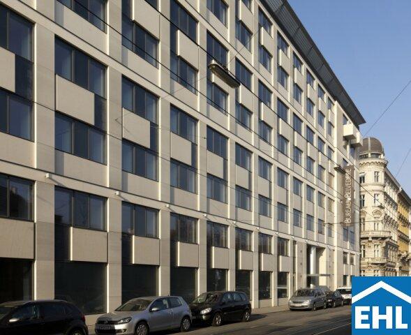 Bureau a Belvedere 2