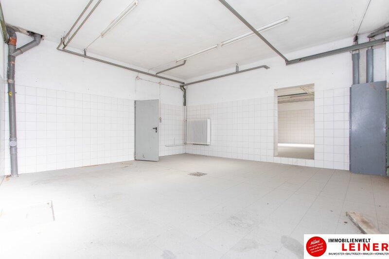 Vereinen Sie Wohnen und Arbeiten an einem Ort: Ihr neues Haus in Hof am Leithaberge Objekt_9962 Bild_161