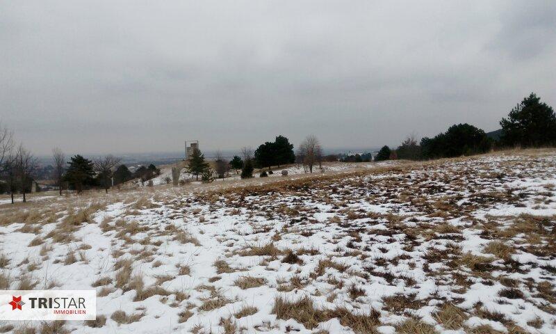Idyllisches Naturparadies zu einem Spitzenpreis - 1232m² Bauland in traumhafter Grünruhelage! /  / 2551Enzesfeld-Lindabrunn / Bild 10