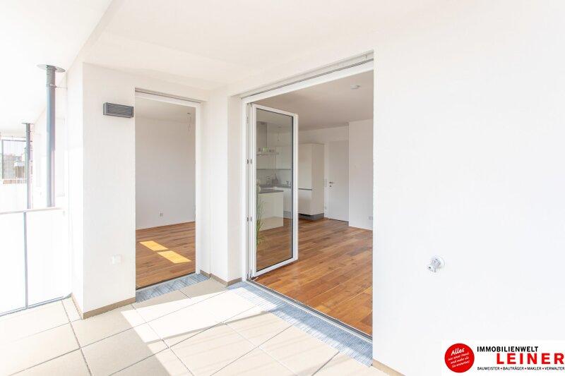 *UNBEFRISTET+BARRIEREFREI*Schwechat - 3 Zimmer Mietwohnung im Erstbezug mit großer Terrasse und Loggia Objekt_9610 Bild_375