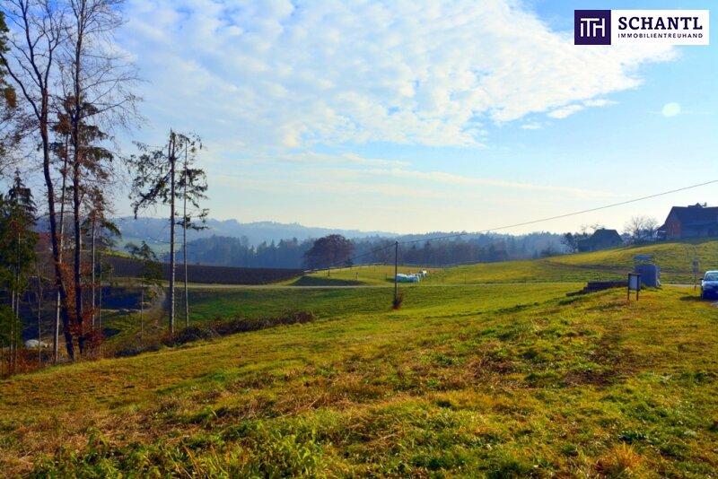 Ein Grundstück ist noch zu haben: Erfüllen Sie sich Ihren Traum vom Eigenheim in St. Josef/Weststeiermark!