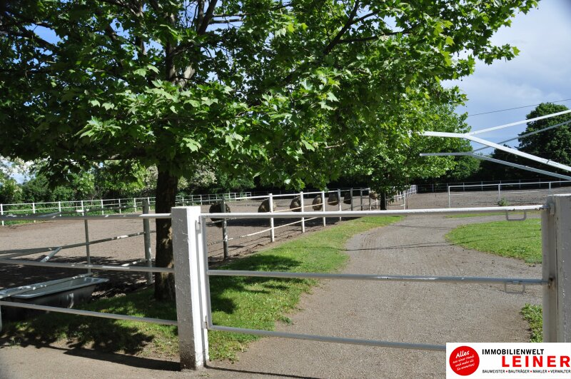 Pferde/Tierliebhaber aufgepasst! Verwirklichen Sie sich Ihren Traum vom eigenen Haus + Pferdestall! Nähe Wien! Objekt_6933 Bild_406