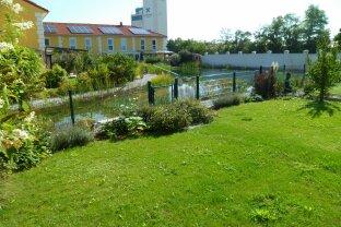 Doppelhaushälfte mit Solarenergie und privatem-Schwimmteich !