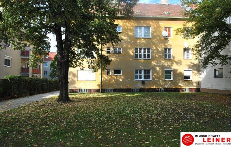 Schwechat: ideales Arbeiterquartier - 1 Zimmer Mietwohnung in Bahnhofnähe! Objekt_9822 Bild_433