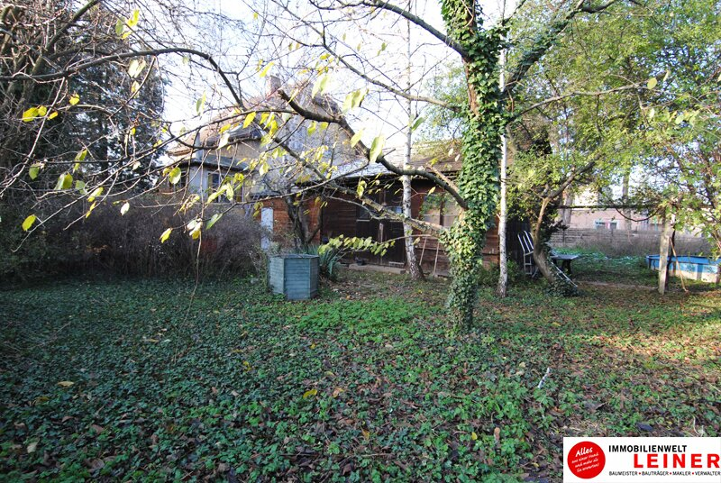 Ihr Haus in Leopoldsdorf - jeden Tag Urlaub im neuen Zu Hause Objekt_9231 Bild_789