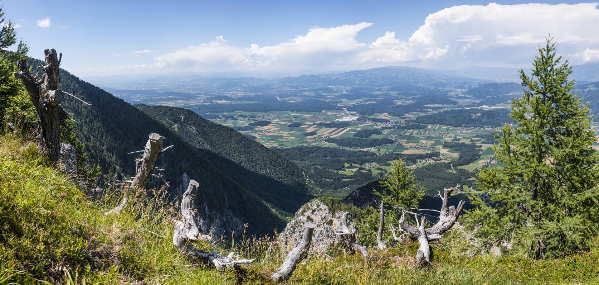Flowtrail Petzen - einer der längsten in Europa