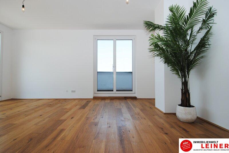 Schwechat - 2 Zimmer Mietwohnung mit 104 m² großem Garten und Terrasse