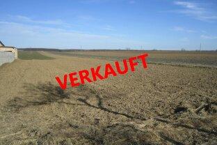 """Baugrundstück in Lutzmannsburg """"VERKAUFT"""""""