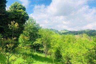 Grundstück mit Weitblick, samt Baugenehmigung, in der Süd-Steiermark