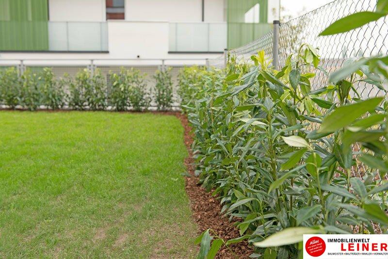 *UNBEFRISTET* *BARRIEREFREI* Schwechat - 3 Zimmer Mietwohnung mit 75 m² großem Garten und 21 m² großerTerrasse Objekt_8830 Bild_674