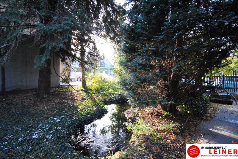 Ihr Haus in Leopoldsdorf - jeden Tag Urlaub im neuen Zu Hause Objekt_9231 Bild_791